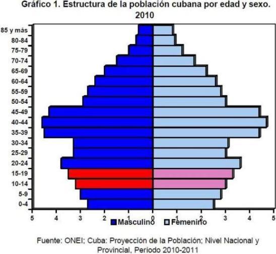 Gráfico 1. 2010