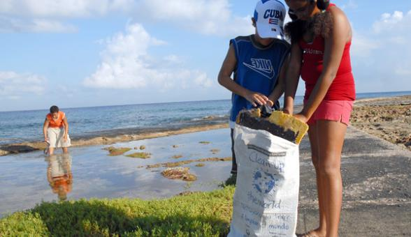 Cuidado del medioambiente. Imagen: Soy Cuba