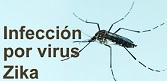 Infección por el virus del Zika
