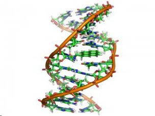 gen-molecula
