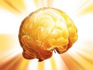 cerebro-aprender