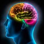 cien-cerebro-150x150