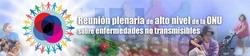 Reunión plenaria de alt nivel de la ONU sobre enfermedades no trasmisibles
