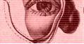 Prótesis bucomaxilofacial