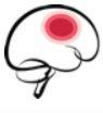 Acta Neuropatologica