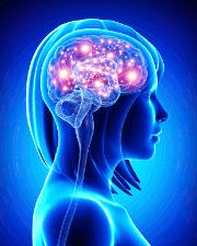 BiomedCentral Colección Alzheimer