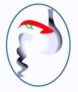 Logo Sociedad Cubana Gastro