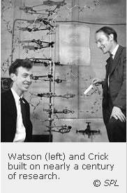 watson-y-crick