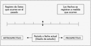 grafico 7