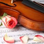 violin-y-rosas-58611