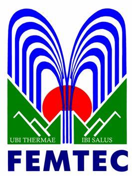 Logotipo miembros FEMTEC