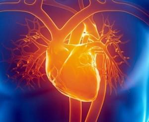CardioOnco
