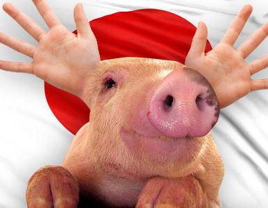 cerdo_japon