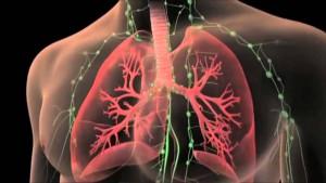 tx_pulmon