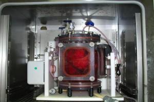 un-grupo-de-cientificos-logra-el-primer-trasplante-de-pulmones-cultivados-en-laboratorio_full_landscape